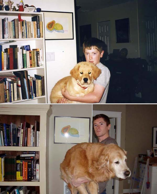 pets-before-after-23