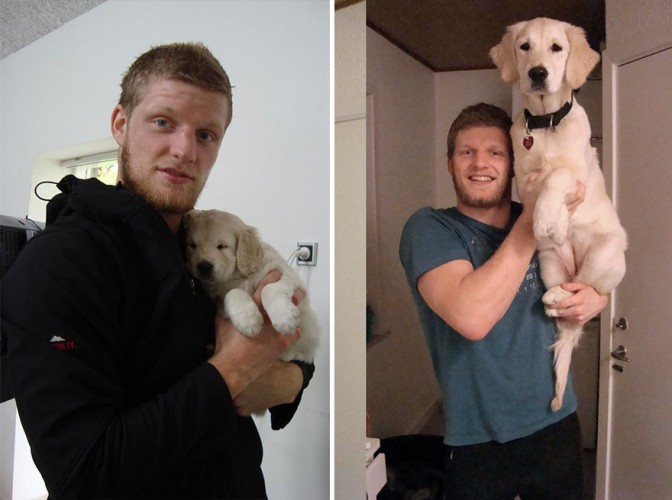 pets-before-after-30